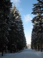 Kirnbergsee im Winter_10