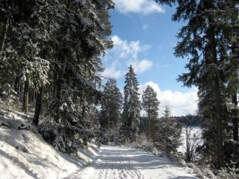 Kirnbergsee im Winter_1