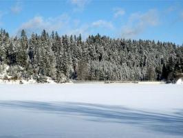 Kirnbergsee im Winter_6