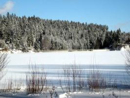 Kirnbergsee im Winter_7